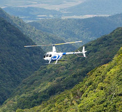 Many Choices of Other Tours and Activities Port Douglas